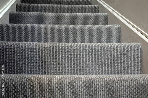 Photo Stands Stairs Modern home staircase carpet