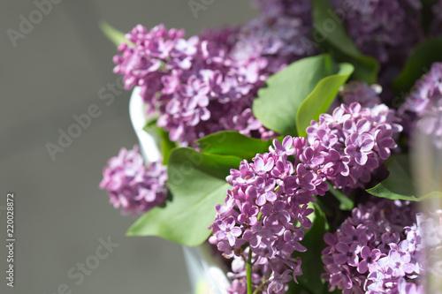 Foto op Canvas Lilac lilac flower macro