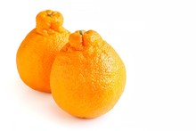 Fresh Sumo Mandarin On White Background