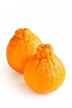 Fresh Sumo Mandarin On White Background