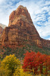 Angels Landing towers over the crimson Big Tooth Maples and brilliant gold Box Elder Maples in Zion National Park.