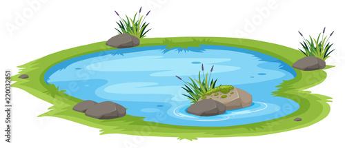 Fotografie, Obraz  A natural pond on white background