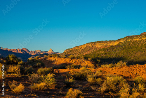 Staande foto Blauwe jeans Zion Utah