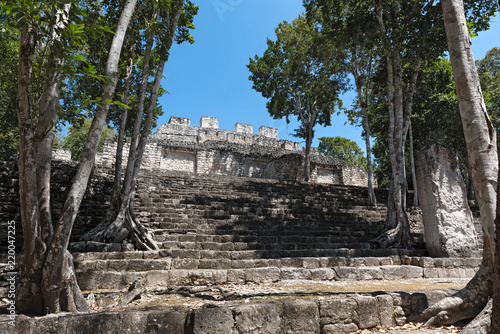 Foto op Aluminium Rudnes The ruins of the ancient Mayan city of calakmul, campeche, Mexico