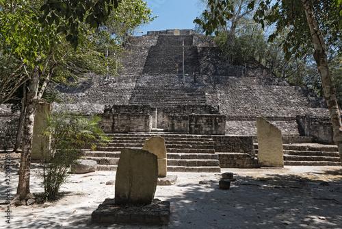 Foto op Aluminium Rudnes The ruins of the ancient Mayan city of calakmul, campeche, Mexico