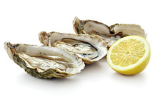 Open Fresh Oysters With Slice ...
