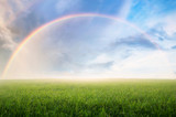 Fototapeta Rainbow - Rainbow with meadow.