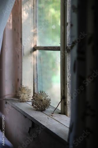 widok z okna  - 220070421