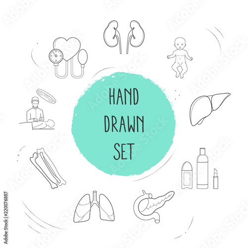 Set Of Organ Icons Line Style Symbols With Pancreas Beauty Products