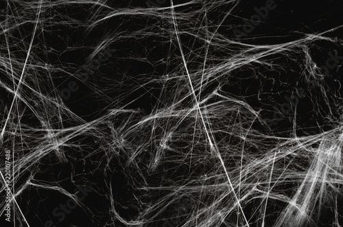 halloween, decoration and horror concept - artificial spider web over black back Canvas Print