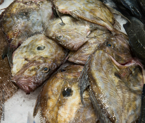 Photo  Fresh John Dory fishes or St.Pierre at fish market.