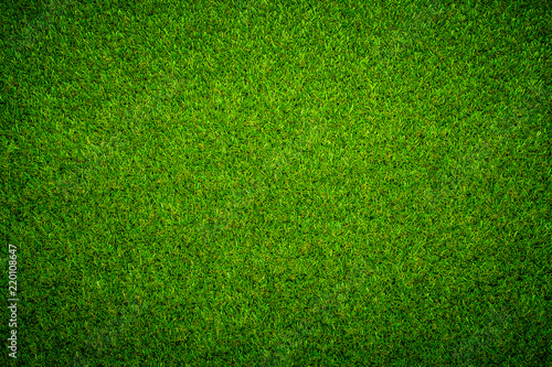 Photo sur Toile Herbe Green grass background Keyword here