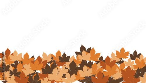 Valokuvatapetti foglie, autunno, foglie secche,