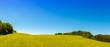 Hügelige Landschaft im Sommer mit Wiese und Wald