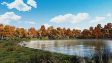 Serene Autumn Scene With Scenic Colorful Trees On The Shore Of Calm Forest Lake Or Pond At Sunny Day. With No People Fall Season 3D Illustration.