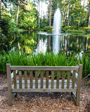 A Bench Faces A Lake In The Bo...