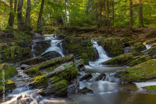 Fototapeten Forest river Water