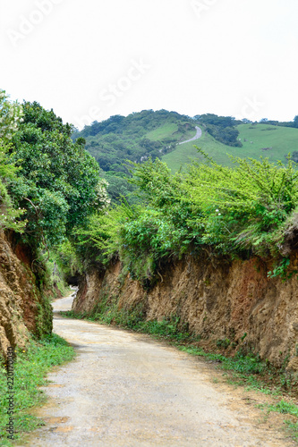 Foto  dirt road to the mountain