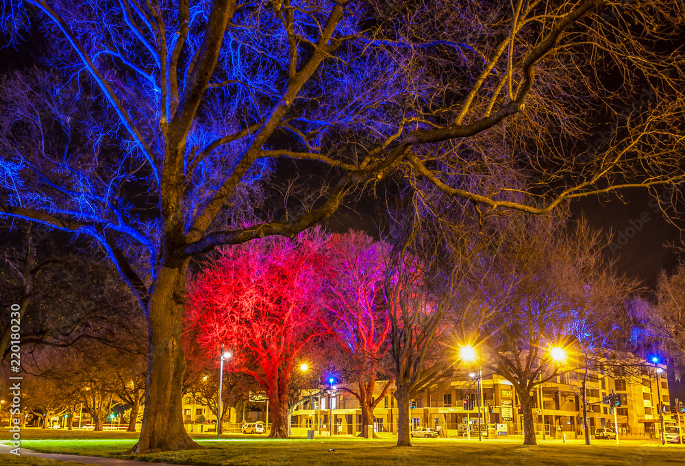Fototapety, obrazy: Latimer Square lights in Christchurch shine brightly at night