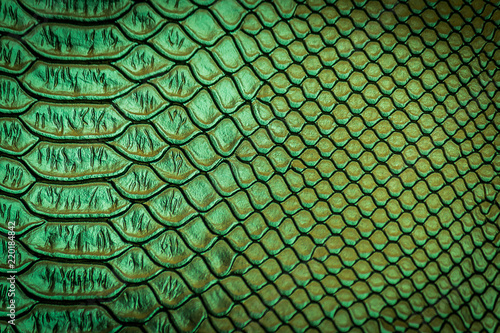 close up of snake skin texture Poster Mural XXL