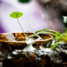 Rain Drops Splashing In A Bowl