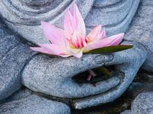 Buddha Statue Hand Holding Pink Lotus Flower