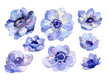 Watercolor Flower Buds Set For...