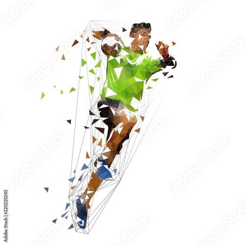 Fotografia, Obraz Handball player shooting ball, abstract polygonal vector illustration