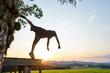 Parkour salto bei Sonnenuntergang