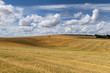 Mown Grain Field Straw and Clouds