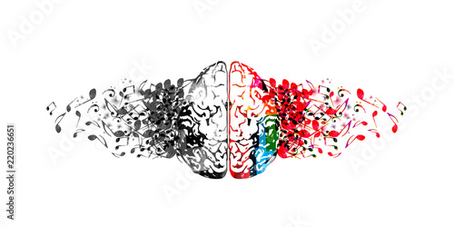 Fotomural Colorful human brain with music notes isolated vector illustration design