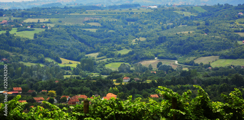 Spoed Foto op Canvas Blauwe jeans Agriculture field landscape,summer view of green land with fields and gardens