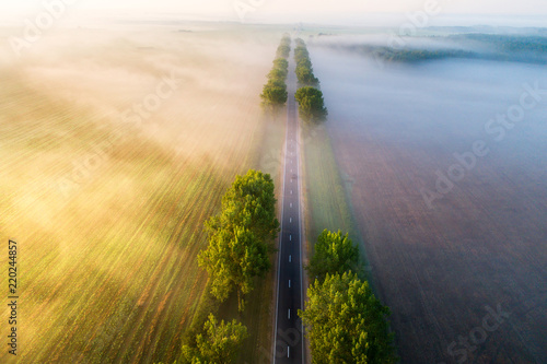 Road in  the morning #220244857