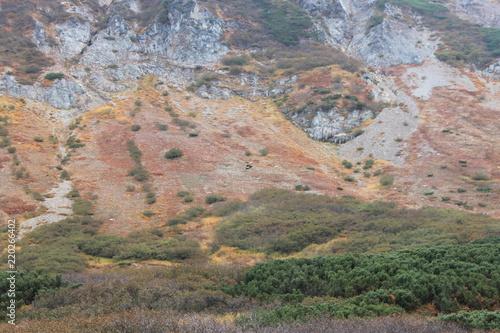 Fotobehang Zalm landscape