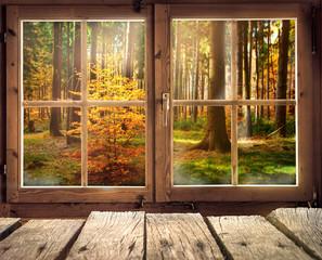 Holzhütte mit Ausblick auf einen Herbstwald