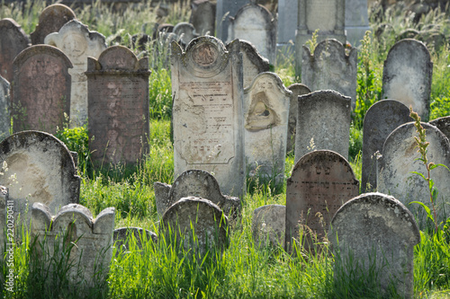 Foto op Canvas Begraafplaats many ancient gravestones on a jewish cemetery in Burgenland