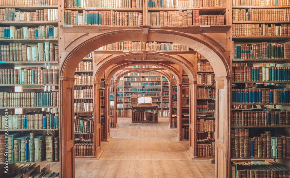 Leinwandbild Motiv - Ruslan : Custom library