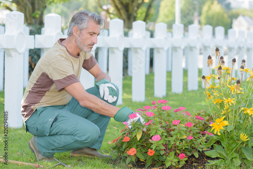 Poster Begraafplaats Man tending flowers in graveyard