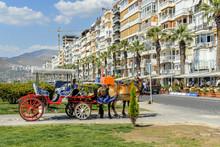 Izmir, Turkey, 23 May 2008: Coachman With Phaeton And Horses At Izmir Kordon