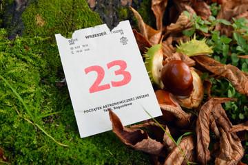 Jesień. Początek astronomicznej jesieni - 23 września
