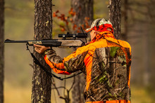 Hunter In The Wilderness Seeki...