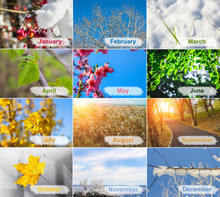 Blank With Different Twelve Colored Images Of Nature For Calendar.
