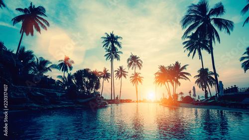 Foto op Aluminium Bomen Amazing sunset on palm coast sea in subtropics.
