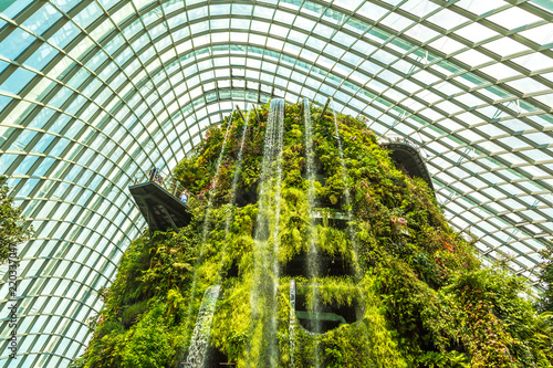 Cloud Forest Dome in Singapore