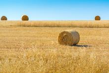 Rolls Of Hay In Field Of Wheat