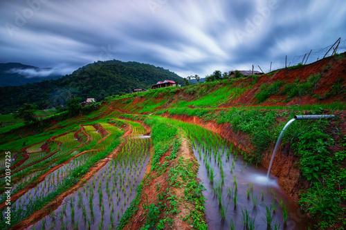 Viewpoint,Terraced rice field in Pa Pong Pieng,Mae Chaem,Chiang Mai,Thailand