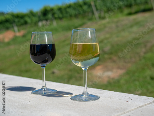 Fotografie, Obraz  Full glasses of red and white wine on sunny day in front of winery grape vines