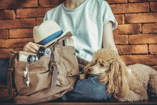 Young Woman With Dog And Backpack . Concept Of Travel.