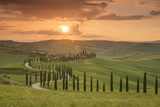 Fototapeta Las - Sunset over the Agriturismo Baccoleno and winding path with cypress trees, Asciano in Tuscany