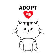 Adopt Me. Dont Buy. Contour Si...